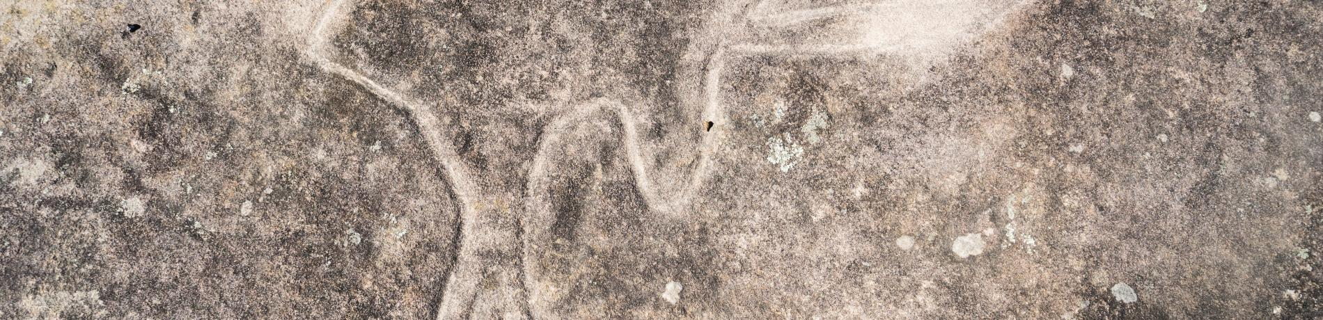 Finchley Aboriginal Area Aboriginal rock engravings credit Simone Cottrell